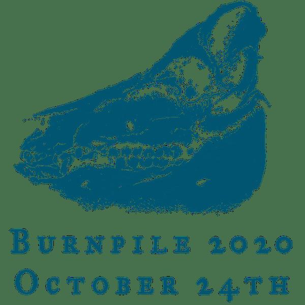 Burnpile 2020